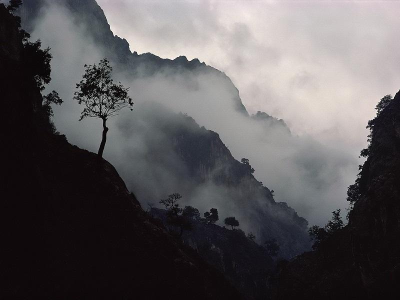 Дождь ходит массаракш плохо туман - мистические хаханьки