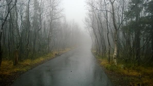 Город Кировск Мурманской области - городской парк в октябре