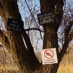Запреты и запреты