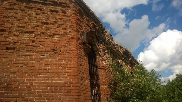 Елшино - церковь Воздвижения Креста Господня фото