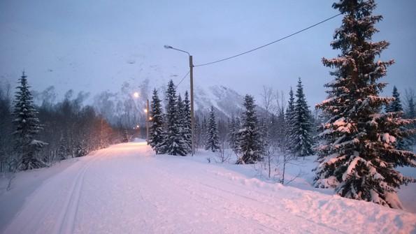 Природа Кольского Севера зимой